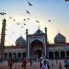 Discovering Delhi
