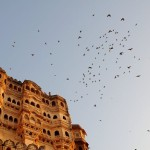 A day in Jodhpur