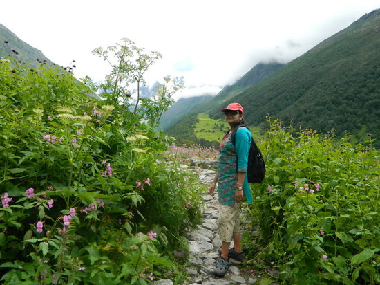 how to get to valley of flowers